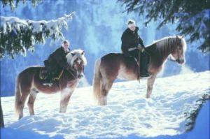 schlosswirtgk_winter